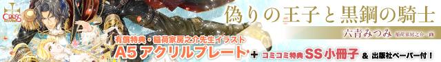 偽りの王子と黒鋼の騎士【有償特典・A5アクリルプレート付】